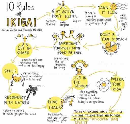 drawing showin the 10 rules to find Ikigai