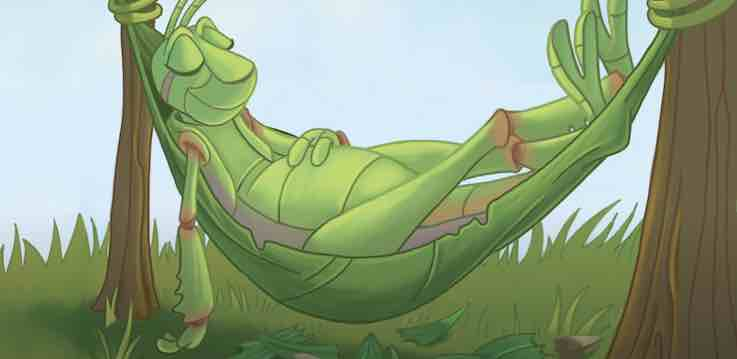 grasshopper is sleeping on a hammock