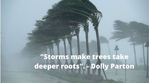 storm hitting trees